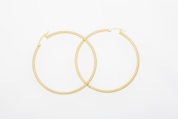 Large Thin Pipette Hoops