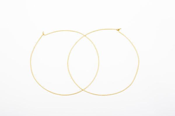 """2"""" Wire Hoops"""